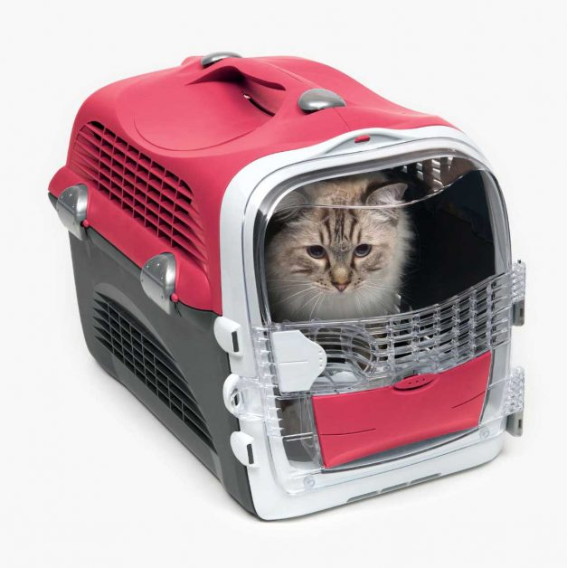 Free Catit cat carrier