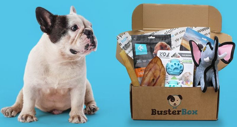 Busterbox free trial