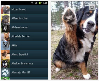Free Dog Breed app