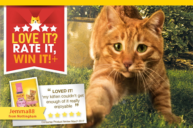 6 months supply free Purina Go-Cat food