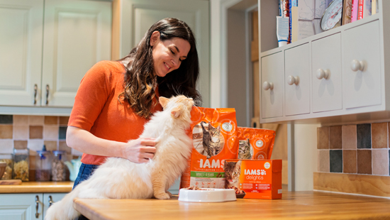 IAMS cat food free sample kit