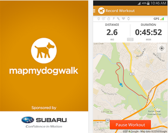 Free Map My Dog walking app