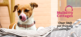 Mulberry Cottage Pet Friendly Holiday offers