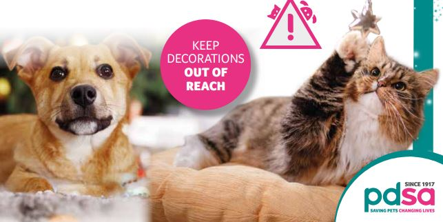 Free PDSA Christmas Pet Survival Guide