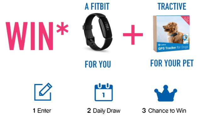 win fitbit and GPS dog tracker for free