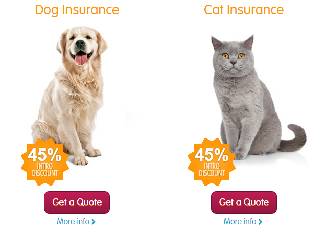 Pet Insurance 45% discount on policy cover