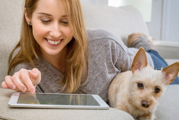 Pet Owners Earn £25 Reward with Powr of You Study