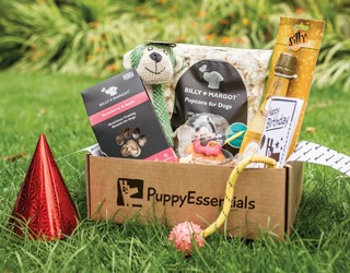 Puppy Essentials Dog Treat Box Discount Code