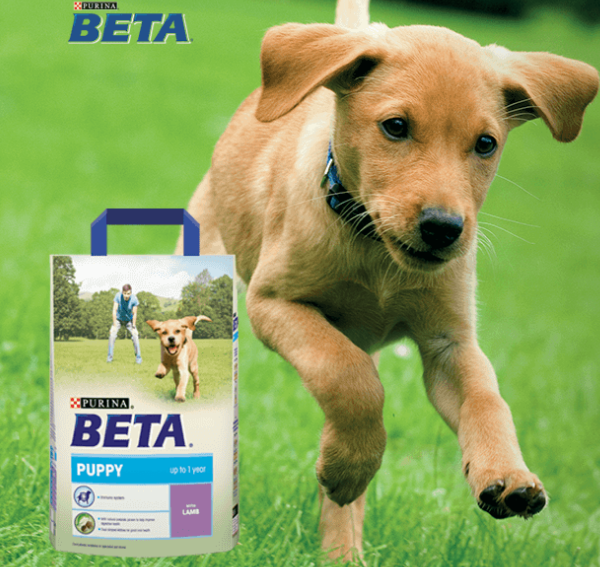 Purina Beta Discount Voucher