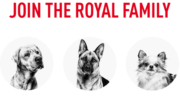 Royal Canin Family Dog Tips and Discounts